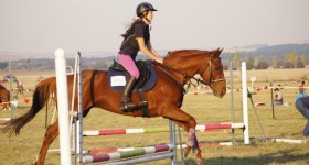 Zone 16 2015 Show Jumping Championship Results