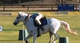 Wamboin Pony Club Mounted Games Competition – 27 May 2018