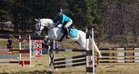 Zone 16 Jumping Equitation and Dressage